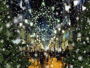 イタリアのクリスマス~Luci di Natale~の画像